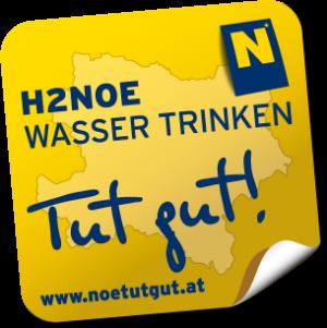 H2NOE Logo